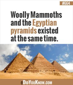 Did you know? - Imgur