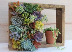 Mini Shelf Vertical planter Succulent by SucculentWonderland