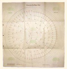 8 Generation Circle Pedigree Chart