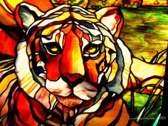"""""""Stained Glass Tiger"""" by canaltowntraveler, via Flickr Seneca Park Zoo…"""