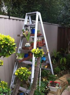 Ladder idea