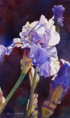 Purple Iris Spring Garden Flower Original Floral Watercolor Painting by KimStenbergFineArt, $250.00