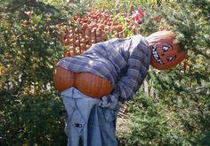 Harvest MOON!