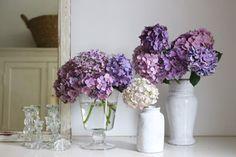 Masaki's diary Jul 2014 Modern Chandelier, Green Flowers, Glass Vase, Garden, Masaki, Bar Counter, Image, Hana, Rooms