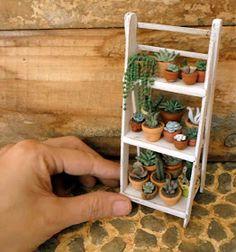 Las Margaritas: Escalera wooden shelf for my cactus and succulents Suculentas Diy, Cactus Y Suculentas, Mini Plants, Indoor Plants, Indoor Plant Shelves, Wood Plant Stand, Miniature Plants, Cactus Flower, Flower Plants