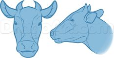 cows nose diagram how to draw a cow nose/mouth | drawing reference ... #13