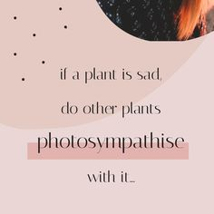 If growing your Instagram account was like growing a plant, posting at the right time would be like putting it in the right amount of sunlight. 🌿☀️ Right Time, Instagram Accounts, Sunlight, Muse, Puzzle, Plants, Puzzles, Nikko, Plant