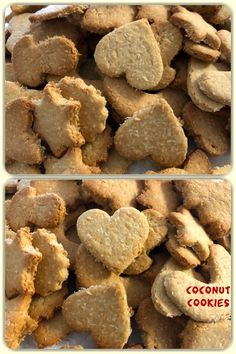 Coconut Cookies (American English) are also called Coconut biscuits (British English), are typically made with flour, coconut, egg (optional), sugar and some type of shortening such as butter or cooking oil, baked into a small, flat shape. #homemade #hausgemacht #yummy #tasty #lecker #delicious #baking #bake #recipe #cookies #coconut #kokos #kekse #coconutcookies #vegetarian #vegetarisch #favourite #biscuits Coconut Biscuits, Coconut Cookies, British English, American English, Flat Shapes, Cooking Oil, Egg, Food And Drink, Butter