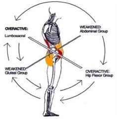 Medial Malleolus (Tom, Dick, AN Harry): tendons of