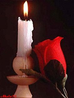 Candle and rose Beautiful Gif, Beautiful Candles, Beautiful Roses, Rosas Gif, Motion Images, Shell Candles, Good Night Greetings, Good Night Gif, Candle In The Wind