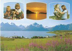 Birdhouses, Golf Courses, Mosaic, Nesting Boxes, Mosaics, Bird Houses, Edible Bird's Nest, Birdhouse, Mosaic Art