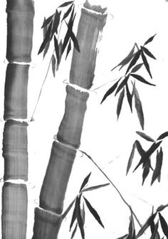 Cerihart.com Bamboo paintings are commonly found in Chinese ink painting. The Chinese have been intrigued by the unique nature of the bamboo tree which is considered to be a species of grass but possesses the characteristics of a tree.