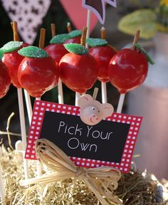 Apple Cake Pops Recipe and a DIY Barnyard Centerpiece - BirdsParty.com