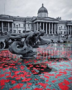 """""""Poppies in the fountains at #TrafalgarSquare for #ArmisticeDay. Just one of many ways in which #London chose to remember those who have fallen in previous…"""""""