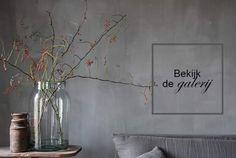 Fresco kalkverf in de kleur Thunder Sky, toegepast in de woonkamer