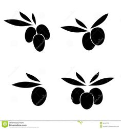 olive tree vector art - Google Search