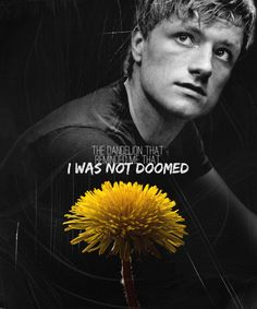 To this day, I can never shake the connection between this boy, Peeta Mellark, and the bread that gave me hope and the dandelion that reminded me that I was not doomed.