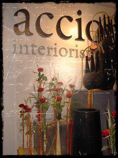 Accions Sant Jordi 2005