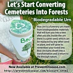 Biodegradable Urns Grow Into A Tree. Thinking about it.