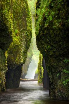 vacilandoelmundo:  Oneonta Gorge, Oregon, United States