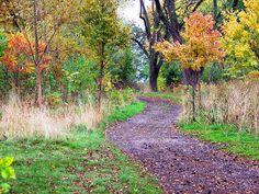 walking path, Parc Downsview Park, Toronto