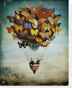 fly away by Christian Schloe http://www.redbubble.com/people/christianschloe