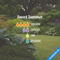Sweet Summer Essenti