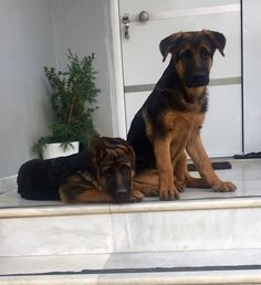 Carla and Enzo!!!