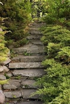 Picture of secret garden stairs stock photo, images and stock photography. Garden Paths, Garden Landscaping, Rocks Garden, Landscaping Supplies, Landscape Design, Garden Design, Meadow Garden, Garden Nook, Outdoor Steps