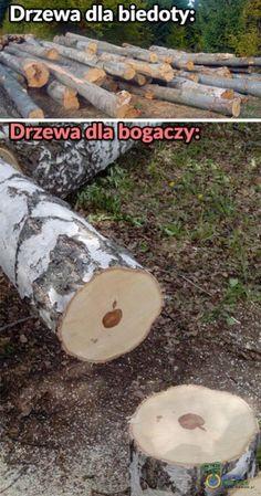 Best Memes, Funny Memes, Jokes, Polish Memes, Bad Humor, Quality Memes, Have Time, Haha, Anime Meme