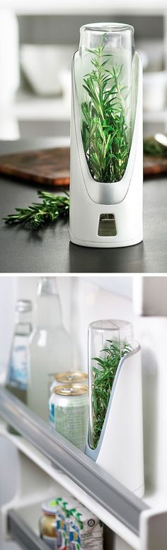 Fresh Herb Keeper // keep herbs and asparagus super fresh for up to 2 weeks in the fridge #product_design