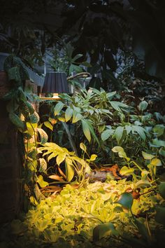 Delta Light, Bollard Lighting, Plant Lighting, Outdoor Floor Lamps, Outdoor Lighting, Led Exterior Lighting, Tube Led, Light Take, Light Building