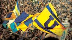 Tigres UANL Fans