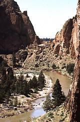 Smith Rock State Park is an international destination for rock climbing fans, as well as a great place to take your family for a hike.  Maybe you will see golden eagles, mule deer, or other wild life (humans hanging off the  rock walls).  Whatever the case, you won't be disappointed.