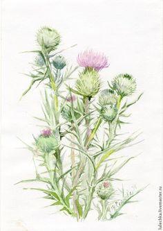 """Акварель """"Чертополох"""" - розовый,чертополох,акварель,цветы,розовые цветы"""