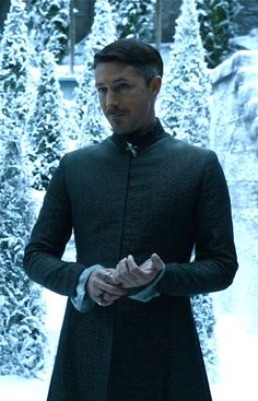Petyr Baelish, Mockingbird, Game of Thrones. I wouldn't trust him as far as I could throw him but there is a strange sexiness there.