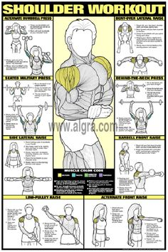 Bruce Algras Shoulder Workout Poster presents the most effective weight training exercises to develop the deltoid muscles for men and women. Each of eight exercises instruct and illustrate how to strengthen and shape the shoulder muscles in a quick and safe manner. This fitness routine and body building poster is full of great education and will enhance any weight room at home or at the health club.