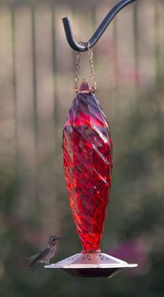 """Love this """"Love Hummingbirds?  We do too :) You'll love this Unique Crystal Spiral Glass Hummingbird Nectar, Glass Hummingbird Feeders, Humming Bird Feeders, Copper Glass, Copper Red, Hummer, Colored Glass, Spiral, Hummingbirds"""