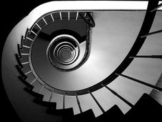 staircase safari #architecture #staircases