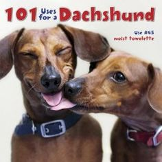 Doxy News. Super Cute puppy Items for your home.  The blog links you to the actual Dachshund item to buy.