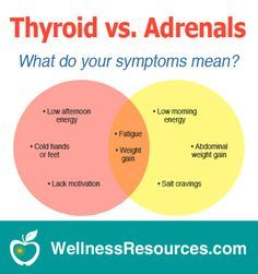 A sluggish thyroid and adrenal fatigue often have similar symptoms with important differences. Discover what your symptoms mean!