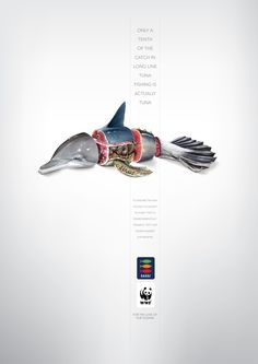 Only a tenth of the catch in long line tuna fishing is actually tuna !