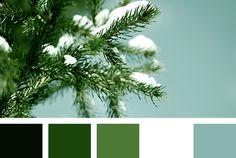 Color Palette #3645