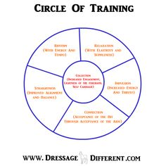 completed-circle-of-training.jpg (800×800)