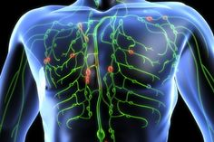 How to Cleanse your Lymphatic System and Fight Off 80% of Chronic Disease - Healthy Food House