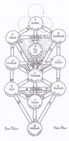The Brahma, Vishnu and Siva granthis on the Tree