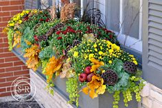 Beautiful Creative Fall Window Box Planter Ideas - In the garden - Fall Flower Boxes, Fall Flowers, Flower Pots, Wedding Flowers, Fall Window Boxes, Window Box Flowers, Window Ideas, Balcony Flowers, Fruits Decoration