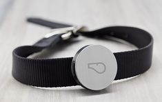 Whistle collar-mounted device and iPhone app to monitor daily activity for your dog