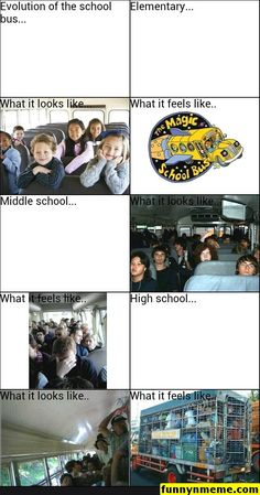 Yup I took the bus all elementary,middle, and high school - Memes And Humor 2020 School Memes Clean, Middle School Memes, High School Funny, Funny School Memes, Kid Memes, School Humor, Mom Humor, School Buses, School School