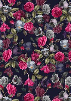 Imagen de background, rose, and botanical